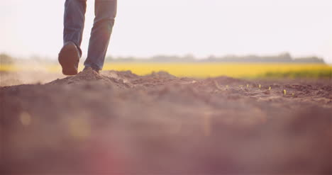 Soil-Agriculture-Farmer-Hands-Holding-And-Pouring-Back-Organic-Soil-Farmer-Touching-Dirt-On-Farm-2