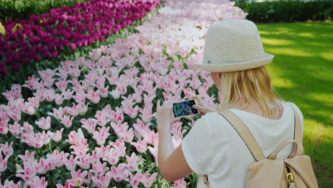 Woman-Taking-Pictures-Pink-Tulips