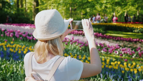 Tourist-Pictures-Of-Flowerbeds-In-Amsterdam