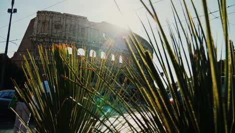Roman-Colosseum-and-Green-Plants