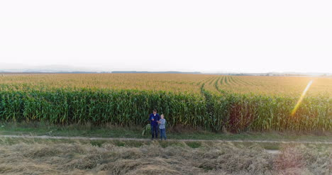 Young-Farmers-Discussing-At-Maize-Field-Agriculture-7