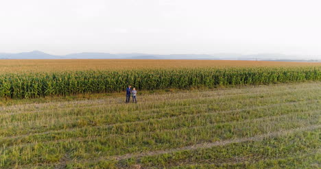 Young-Farmers-Discussing-At-Maize-Field-Agriculture-18