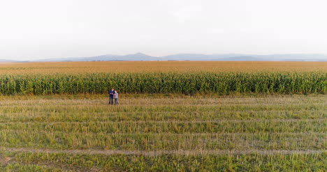 Young-Farmers-Discussing-At-Maize-Field-Agriculture-19