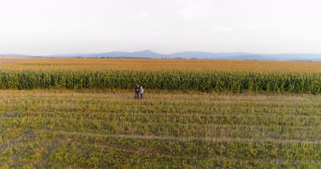 Young-Farmers-Discussing-At-Maize-Field-Agriculture-21