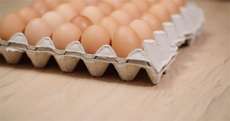 Eggs-Extruder-Full-Of-Fresh-Eggs-On-Black-Background-1