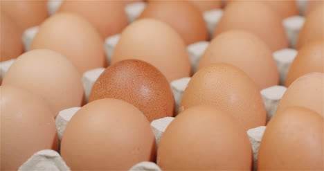 Eggs-Extruder-Full-Of-Fresh-Eggs-On-Black-Background-3