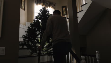Man-Carries-Christmas-Tree-Upstairs