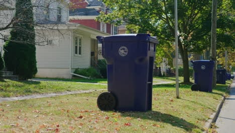 Garbage-Cans-in-Suburban-Neighbourhood