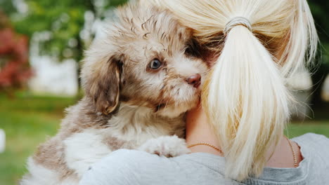 Woman-Cuddling-Cute-Puppies