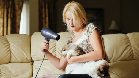 Woman-Is-Dries-a-Puppy-With-A-Hair-Dryer