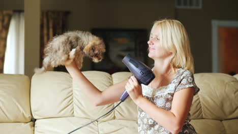Woman-Drying-Puppy-With-A-Blow-Dryer