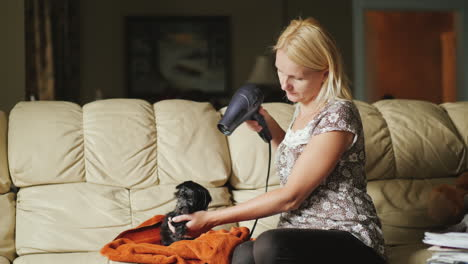 Woman-Drying-Black-Puppy-With-Hair-Dryer