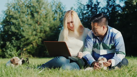 Couple-With-Laptop-and-Puppies-in-Backyard