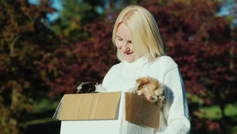 Woman-Holding-Box-of-Puppies