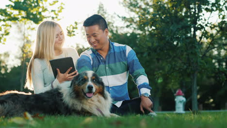 Woman-Uses-Tablet-While-Man-Pets-Dog