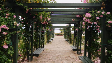 Garden-Walkway-with-Flowers
