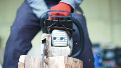 Young-Man-Cutting-Wood-
