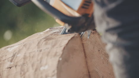 Man-Using-Chainsaw-And-Cutting-Wood-