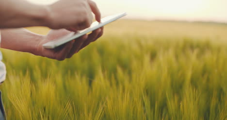Farmer-Using-Tablet-Close-Up-Agriculture-