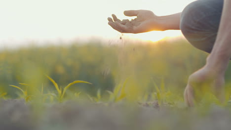Soil-Agriculture-Farmer-Hands-Holding-And-Pouring-Back-Organic-Soil-1