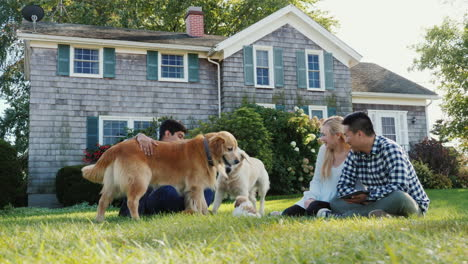 Dogs-Play-Near-Group-of-Friends