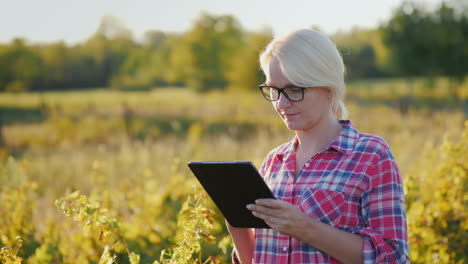 Woman-With-Tablet-in-Vineyard