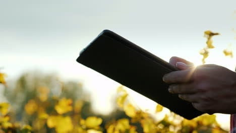 Hands-Using-Tablet-on-a-Farm