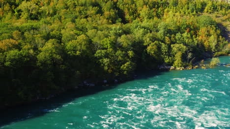 Niagara-River-Forested-Banks