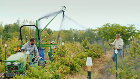 Farmers-Netting-Vineyard-With-Machine