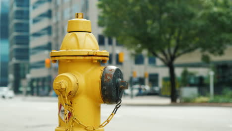Yellow-Fire-Hydrant-by-Busy-Street