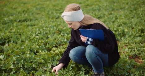 Female-Farmer-Examining-Oilseed-Rape-Field-4
