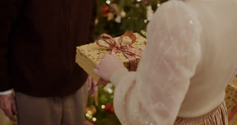 Granddaughter-Giving-Christmas-Gift-To-Grandfather-At-Home