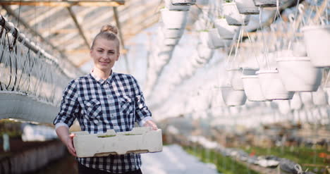 Agriculture-Business-Smiling-Gardener-Working-With-Flowers-In-Greenhouse-1