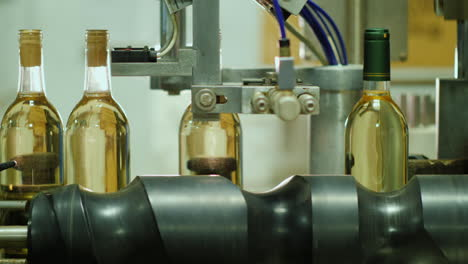Wine-Bottling-Machine-and-Conveyor-Belt