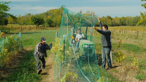 Farmers-Remove-Nets-From-Vineyard