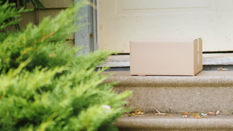 Picking-Up-Parcel-From-Doorstep