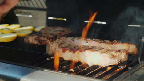 Meat-on-Barbecue-Grill