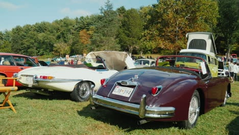 Classic-Cars-at-Outdoor-Car-Show