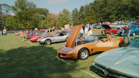 Rows-of-Classic-Cars-at-Car-Show