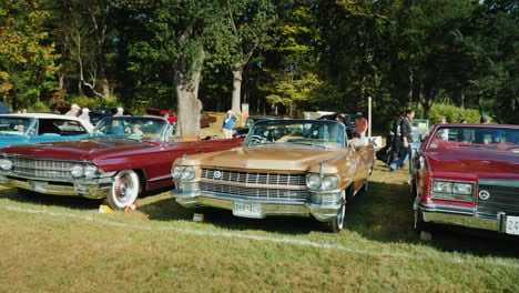 Row-of-Classic-Cadillac-Cars