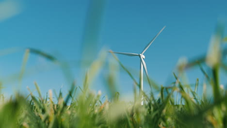 Wind-Turbine-Through-Blades-of-Grass