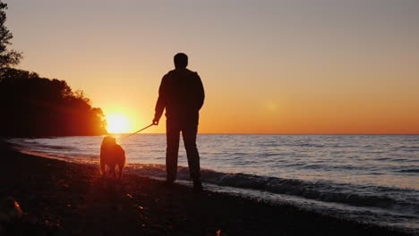 Man-Walks-Dog-by-Lake-at-Sunset