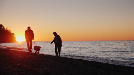 Couple-Play-With-Dog-at-Sunset