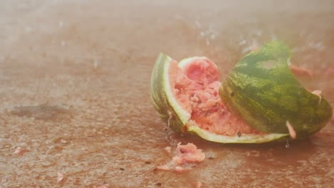 Slow-Motion-Watermelon-Smash