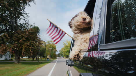 Dog-With-American-Flag-in-Car-Window