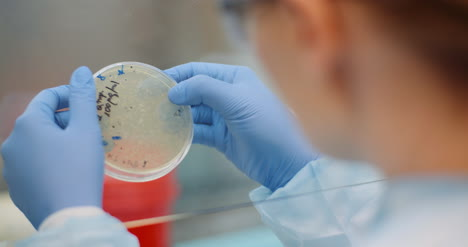 Scientist-Looking-At-Coronavirus-Virus-And-Bacteries-On-Petri-Dish-At-Laboratory