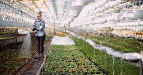 Agriculture-Gardener-Watering-Flowers-At-Greenhouse-4