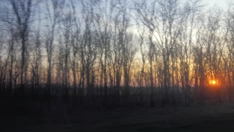 View-From-The-Window-Of-A-Train-Or-Car-Through-The-Branches-Of-The-Trees-You-Can-See-The-Rising-Sun-