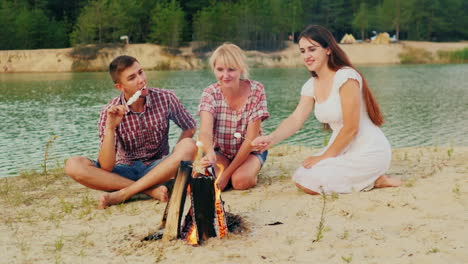 The-Company-Of-Friends-Around-The-Campfire-Marshmallow-Roasts-Good-Time-Prores-Hq-422-10-Bit-Slow-Mo