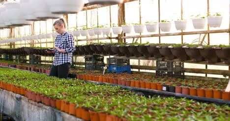 Agriculture-Female-Gardener-Working-In-Greenhouse
